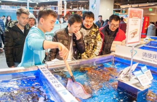 盒马、7Fresh、掌鱼……电商巨头的生鲜超市功力几何?